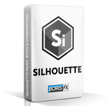 Silhouette Paint (Nodelocked) Annual Subscription (OFX)