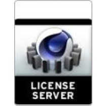 License Server - MLS 2015 5-9 Licenses per customer.