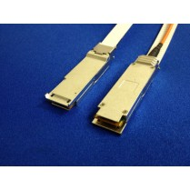 10G-QP-25M Cable