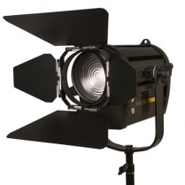 "White Star 4"" Fresnel 100 Watt Light"